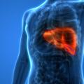 Doenças Hepáticas - Doenças do Fígado - Hepatologia